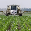 Farmer and Conservation Groups Challenge EPA and Monsanto in Court over XtendiMax - Sustainable Pulse