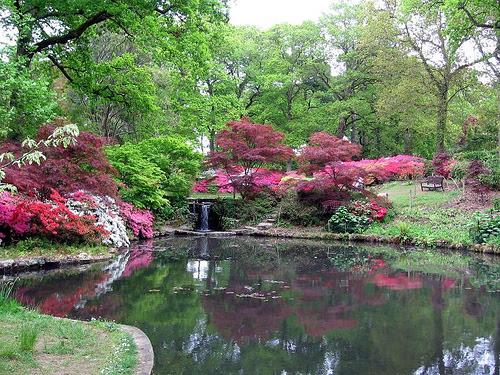 Exbury Garden, Hampshire