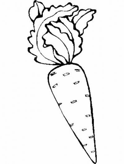 Dibujo De Zanahorias Dibujo Para Colorear De Zanahorias Dibujos