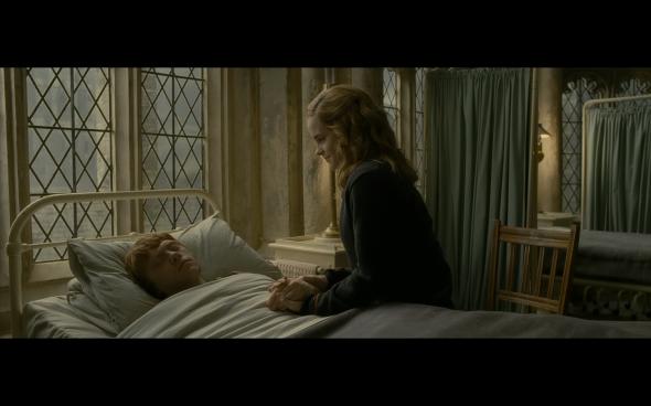 Hermione y Ron en El Príncipe Mestizo