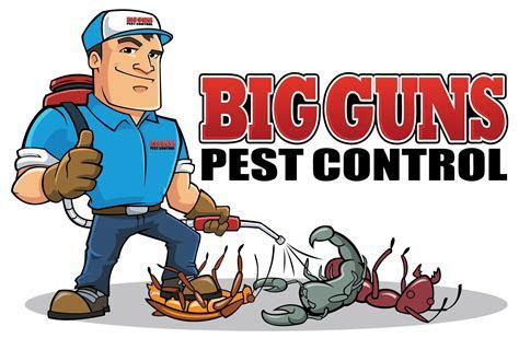 Upcoming events for pest control in delhi   EventsHigh