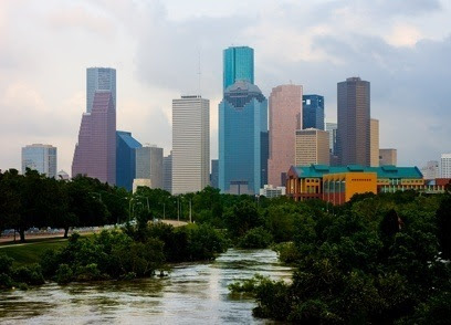 Becoming A Veterinary Assistant In Houston, Texas