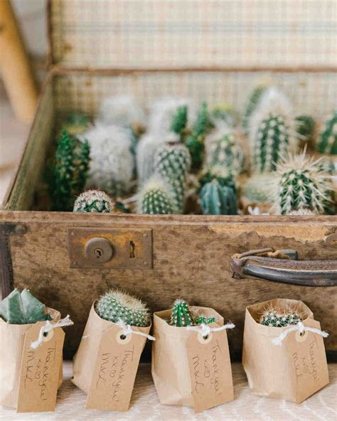 Trending Now: Cactus Wedding Ideas   Martha Stewart Weddings
