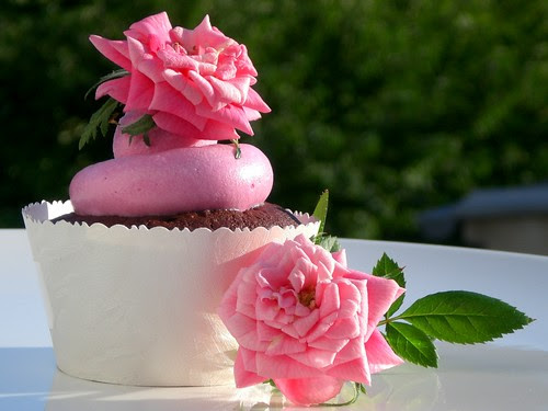 chocolate cupcakes with rose water meringue buttercream