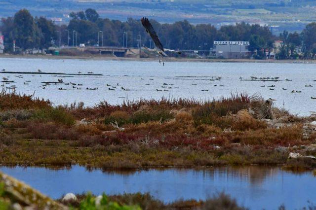 Αύξηση της στάθμης της θάλασσας φέρνει η κλιματική αλλαγή στην Ελλάδα | in.gr