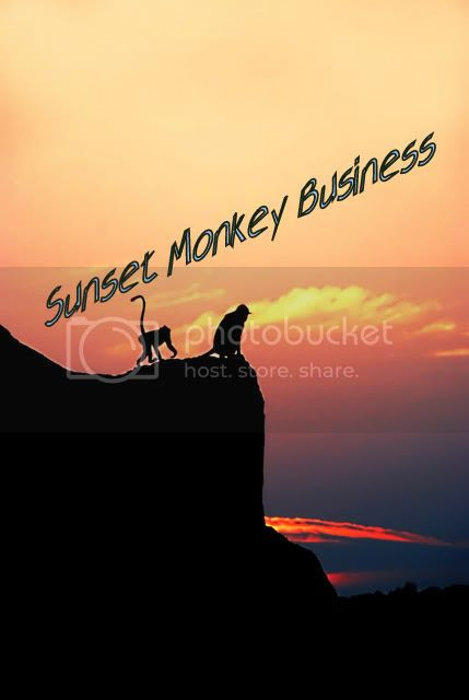 Sunset Monkey Business