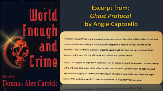 World Enough And Crime ~ daily Feature: Ghost Protocol, by Angie Capozello | Carrick Publishing