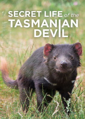 Secret Life of the Tasmanian Devil - Season 1