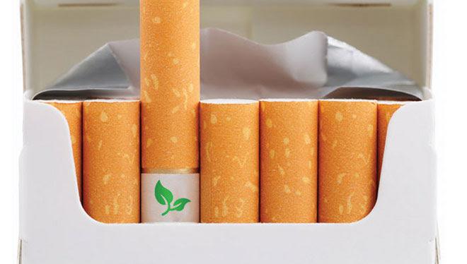 Colillas de cigarrillos que son semillas