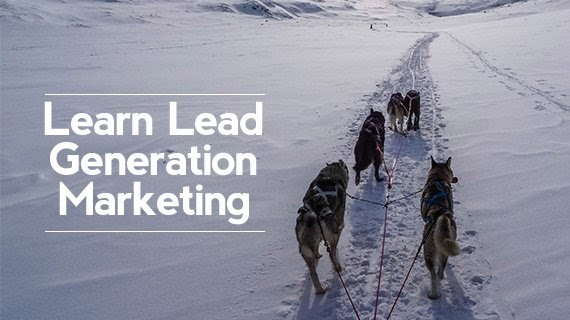 [100% Off BitDegree Coupon] - Learn Lead Generation Marketing: an Exclusive 4 Week Workshop