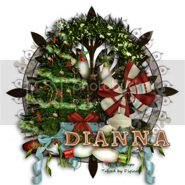 Christmas Lights 2 - Dianna