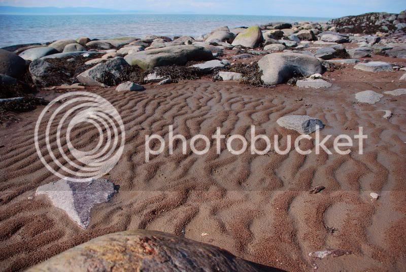 low-tide art