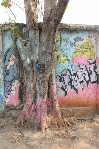 The Tree Of Life by firoze shakir photographerno1