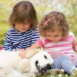 Tips for Parents to Prevent Dog Bite Injuries to Children - Roberts & Roberts