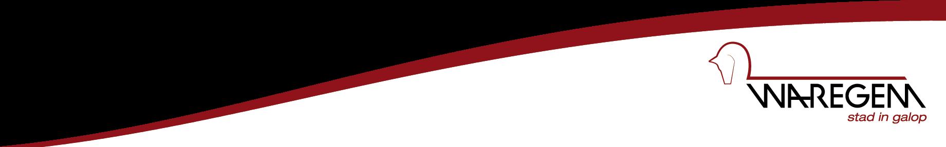 logo Stad Waregem