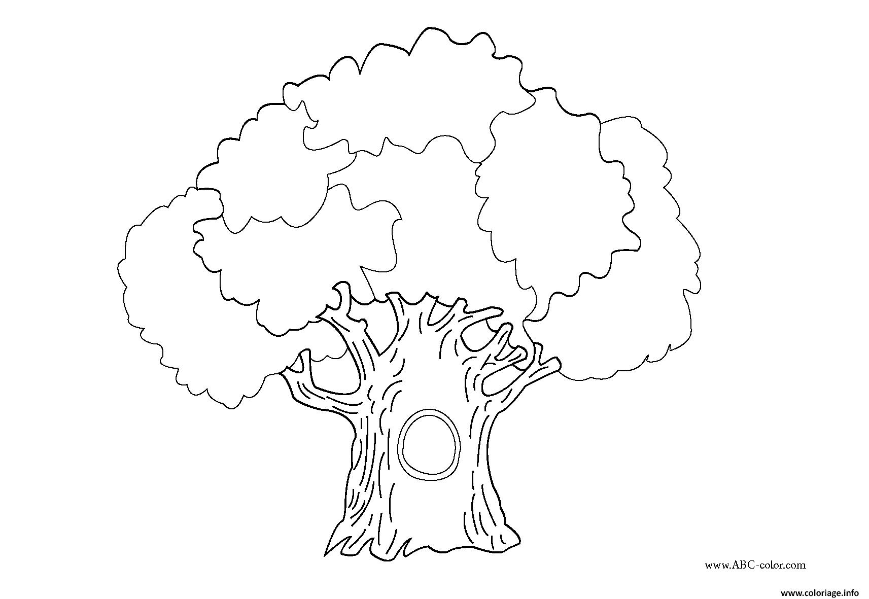 Coloriage arbre 99