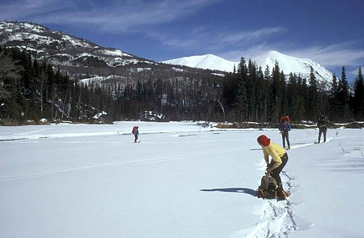 People enjoying snowshoeing in winter