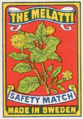 safetymatch050