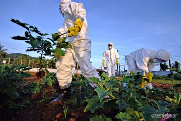 ¿Y los disfraces de descontaminación biológica, creen ustedes que los regalan?