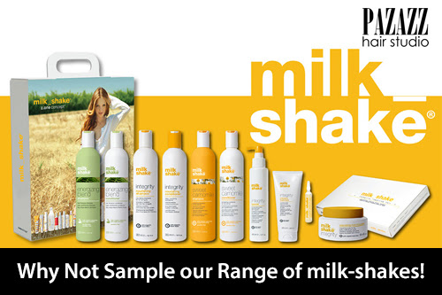 Why Not Sample our Range of milk-shakes!
