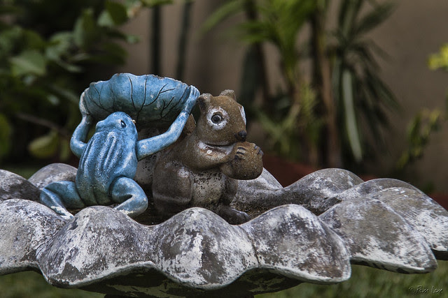 Frog and squirrel yard art