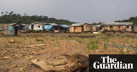 Destruction of nature as dangerous as climate change, scientists warn | Environment | The Guardian