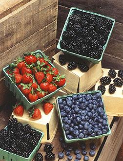 Surtido de zarzamoras, fresas y arándanos frescos. Enlace a la información en inglés sobre la foto