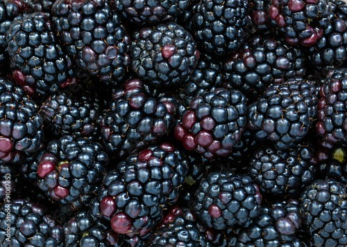 Health Benefits Of Blackberries :