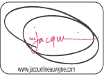 Jacqueline Auvigne Fine Art & Pattern