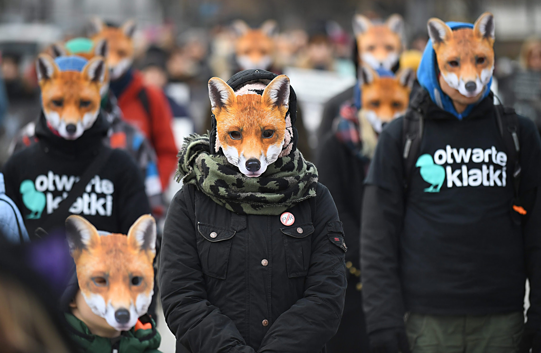 People wearing fox masks take part in the 'Day without fur' demonstration near the Polish Sejm headquaters in Warsaw, Poland, 15 November 2016. The demonstrators oppose breeding canine animals for gaining the fur. In this case the signatures for a petition were gathered and stored in the Chancellery of the Sejm. The slogan on the posters says: 'The victims of the Polish fur industry'.  EPA/BARTLOMIEJ ZBOROWSKI POLAND OUT