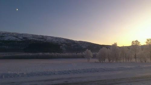 Vinter på Fauskemyrene by Lasse G. Dahl