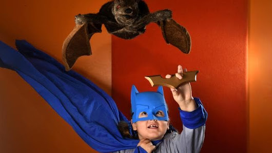 Why kids are going batty at the Museum