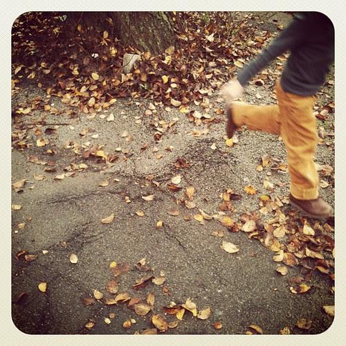 Running through leaves.