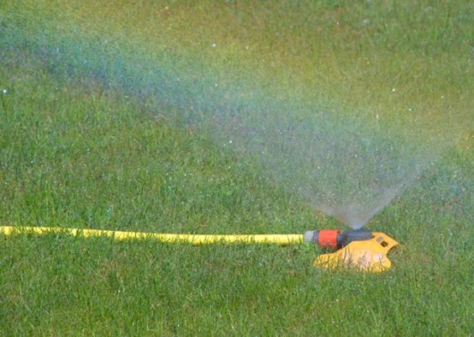 Top Tips To Water Your Lawn | SteelHusker