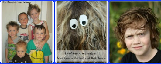 Crazy Hair Day and Contest hosted by Hip Homeschool Moms