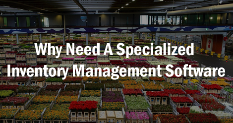 Why Need A Specialized Inventory Management Software?