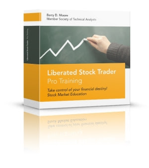 Liberated Stock Trader Book, cobining the best of fundamental and   technical analysis.