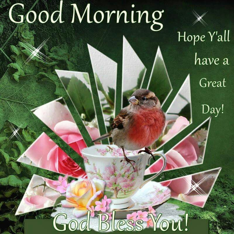 Good Morning Hope Yall Have A Great Day God Bless You Pictures