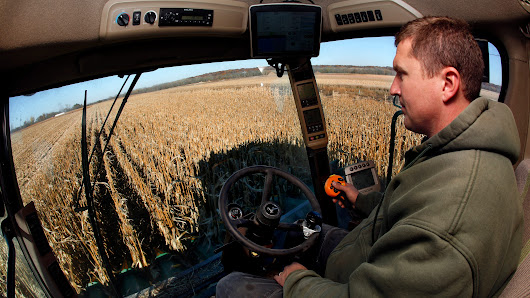 Corn growers face pressure on sustainable farming
