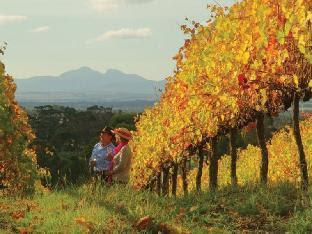Losari Retreat Margaret River Wine Region