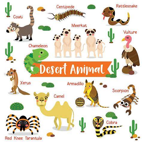 royalty  desert animals clip art vector images