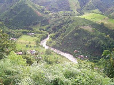 MUNICIPIO DE ANDES  Andes