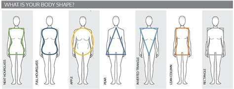 Body Shapes   Wedding Hints and Tips   The White Wedding