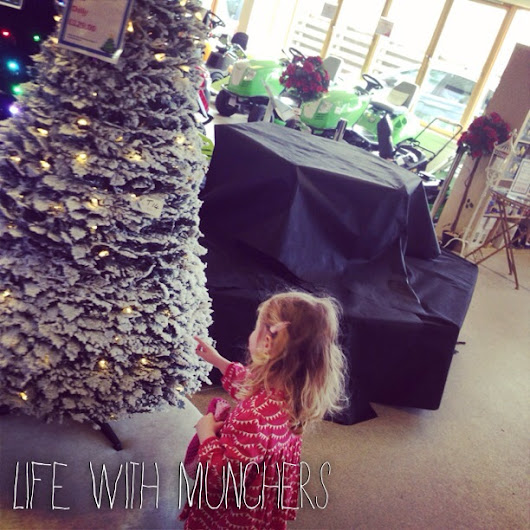 My Sunday Photo 28th September 2014 - Lifestyle & Parenting Blog | Life With Munchers