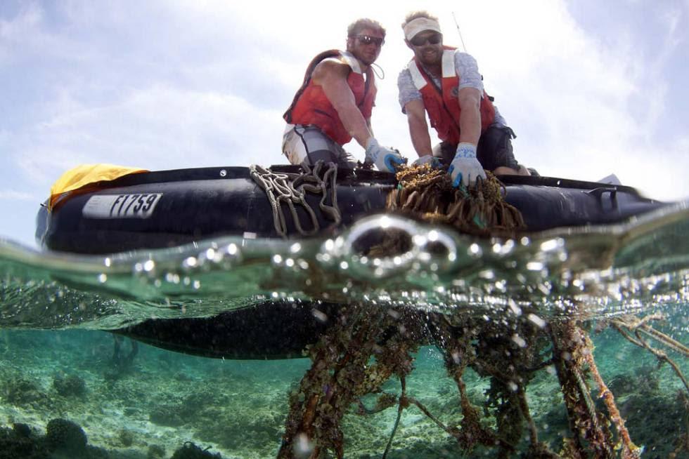 Trabajadores del Servicio Nacional de Océanos de Estados Unidos retiran unas redes perdidas.