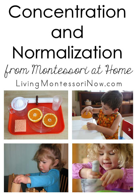 "John Bowman explains the terms ""concentration"" and ""normalization"" in this excerpt from his Montessori at Home! eBook"