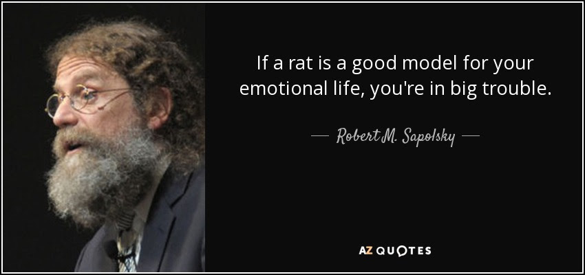 If a rat is a good model for your emotional life, you're in big trouble. - Robert M. Sapolsky