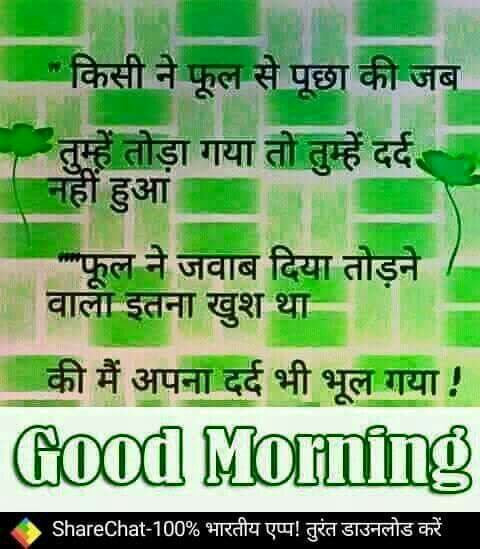 Best Good Morning Quotes In Hindi Greetings1