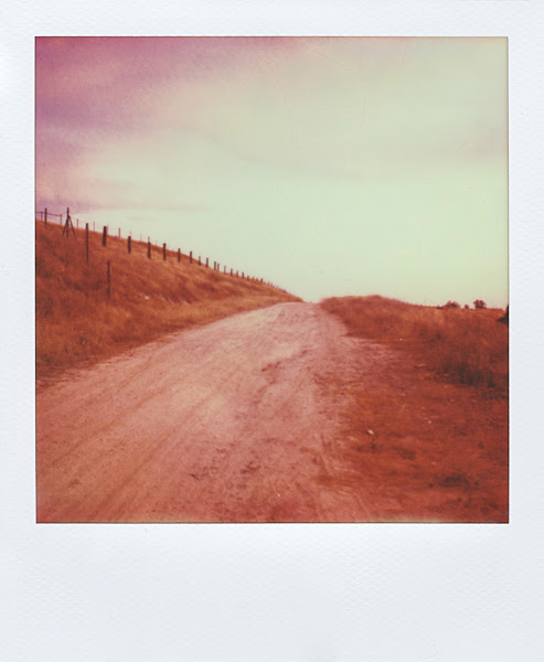 Polaroids: Three at Sunset