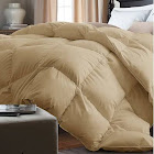 Alwyn Home Down Alternative Single Comforter Size: Twin, Color: Khaki